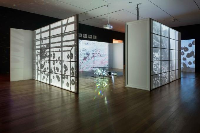 15.-Jonas-installation-view